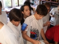 colonias_en_riera_de_ciuret_2009_86_20110811_1298442594-jpg