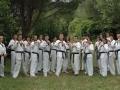 taekwondo_en_riera_de_ciuret_2009_117_20110811_1383978075-jpg