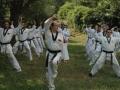 taekwondo_en_riera_de_ciuret_2009_118_20110811_1041584991-jpg