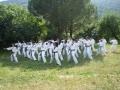 taekwondo_en_riera_de_ciuret_2009_119_20110811_1419129356-jpg