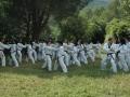 taekwondo_en_riera_de_ciuret_2009_120_20110811_1922856929-jpg