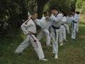 taekwondo_en_riera_de_ciuret_2009_122_20110811_1363883137-jpg