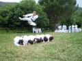 taekwondo_en_riera_de_ciuret_2009_125_20110811_1056771069-jpg