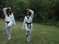 taekwondo_en_riera_de_ciuret_2009_129_20110811_1536112640-jpg