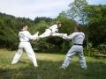 taekwondo_en_riera_de_ciuret_2009_130_20110811_1567331308-jpg