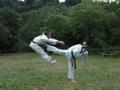 taekwondo_en_riera_de_ciuret_2009_131_20110811_1736494406-jpg