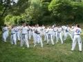 taekwondo_en_riera_de_ciuret_2009_136_20110811_1157876377-jpg