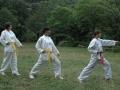 taekwondo_en_riera_de_ciuret_2009_140_20110811_1219694767-jpg