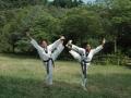 taekwondo_en_riera_de_ciuret_2009_141_20110811_2053775722-jpg
