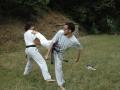 taekwondo_en_riera_de_ciuret_2009_146_20110811_1466126704-jpg