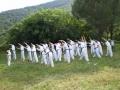 taekwondo_en_riera_de_ciuret_2009_154_20110811_2074644245-jpg