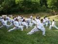 taekwondo_en_riera_de_ciuret_2009_156_20110811_1739067866-jpg