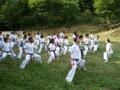 taekwondo_en_riera_de_ciuret_2009_157_20110811_1740220128-jpg