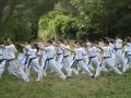 taekwondo_en_riera_de_ciuret_2009_167_20110811_1722571698-jpg