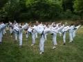 taekwondo_en_riera_de_ciuret_2009_168_20110811_1433354627-jpg