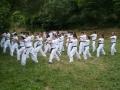 taekwondo_en_riera_de_ciuret_2009_170_20110811_1085034253-jpg