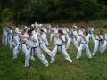 taekwondo_en_riera_de_ciuret_2009_176_20110811_1563016600-jpg