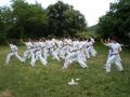 taekwondo_en_riera_de_ciuret_2009_177_20110811_2019326428-jpg