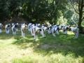 taekwondo_en_riera_de_ciuret_2009_179_20110811_1152063143-jpg