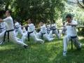 taekwondo_en_riera_de_ciuret_2009_180_20110811_1665510008-jpg