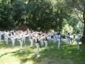 taekwondo_en_riera_de_ciuret_2009_182_20110811_1591643222-jpg