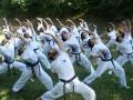 taekwondo_en_riera_de_ciuret_2009_183_20110811_1246128237-jpg
