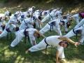 taekwondo_en_riera_de_ciuret_2009_184_20110811_1219290728-jpg