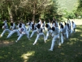 taekwondo_en_riera_de_ciuret_2009_186_20110811_1420545098-jpg
