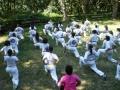 taekwondo_en_riera_de_ciuret_2009_188_20110811_1258644884-jpg