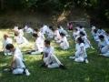 taekwondo_en_riera_de_ciuret_2009_192_20110811_1152495648-jpg