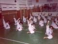 1985_gimnasio_hanra_03_20110812_2026186228.jpg